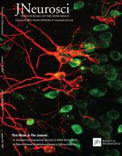 The Journal of Neuroscience: 38 (4)