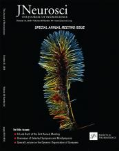 The Journal of Neuroscience: 38 (44)