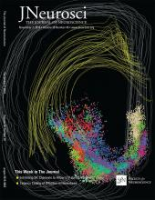 The Journal of Neuroscience: 38 (45)