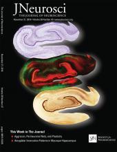 The Journal of Neuroscience: 38 (47)