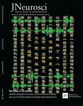 The Journal of Neuroscience: 38 (5)