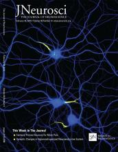 The Journal of Neuroscience: 38 (9)