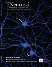 The Journal of Neuroscience: 38 (9)