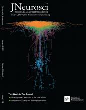 The Journal of Neuroscience: 39 (1)
