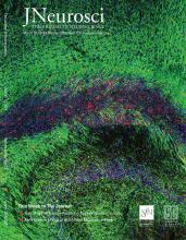 The Journal of Neuroscience: 39 (12)