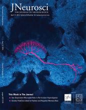 The Journal of Neuroscience: 39 (16)