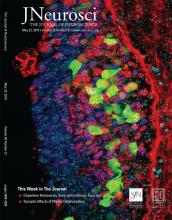 The Journal of Neuroscience: 39 (21)