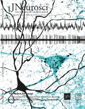 The Journal of Neuroscience: 39 (23)