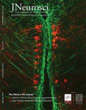 The Journal of Neuroscience: 39 (24)