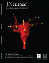 The Journal of Neuroscience: 39 (26)