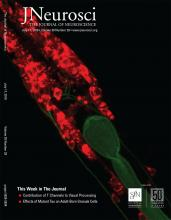 The Journal of Neuroscience: 39 (29)
