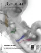 The Journal of Neuroscience: 39 (30)