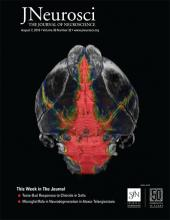The Journal of Neuroscience: 39 (32)