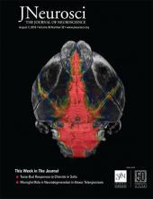 The Journal of Neuroscience: 39 (32)