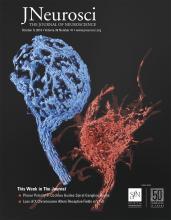 The Journal of Neuroscience: 39 (41)
