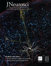 The Journal of Neuroscience: 39 (43)