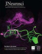 The Journal of Neuroscience: 39 (44)