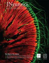 The Journal of Neuroscience: 39 (45)