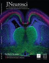 The Journal of Neuroscience: 39 (8)