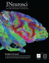 The Journal of Neuroscience: 40 (10)