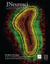 The Journal of Neuroscience: 40 (21)