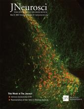The Journal of Neuroscience: 40 (22)