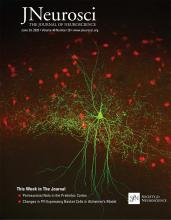 The Journal of Neuroscience: 40 (26)