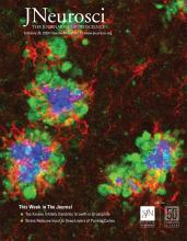 The Journal of Neuroscience: 40 (9)