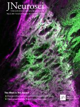 The Journal of Neuroscience: 41 (18)