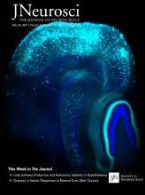 The Journal of Neuroscience: 41 (21)