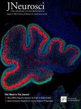 The Journal of Neuroscience: 41 (32)